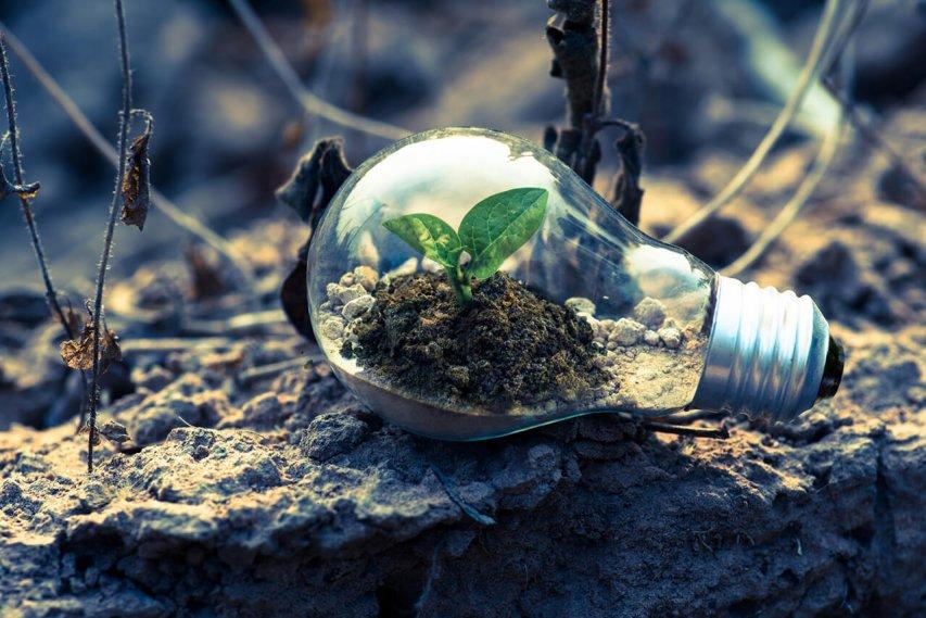 Čo je udržateľný marketing?